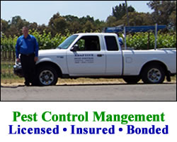Pest Removal Services Sonoma California